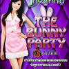 Insomnia - The Bunny Party