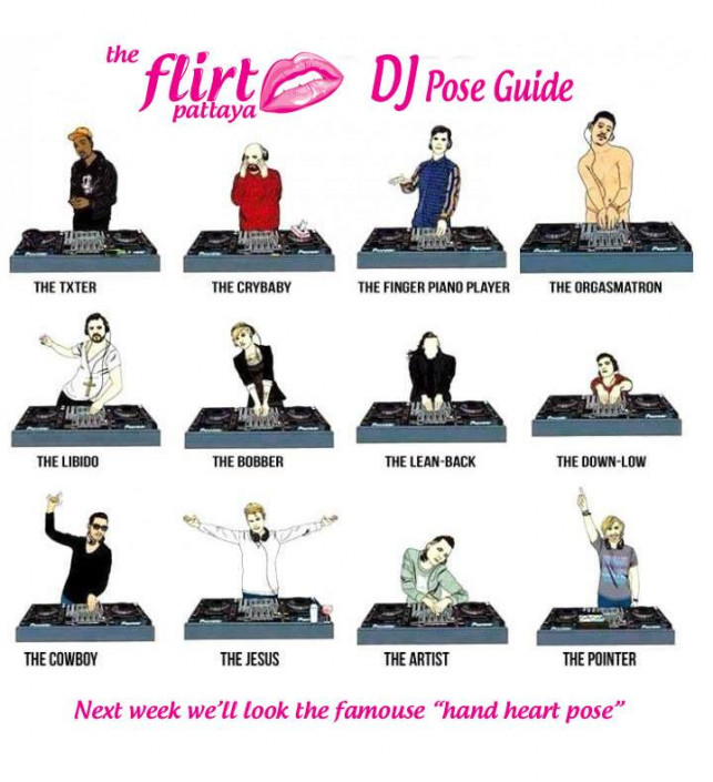DJ Pose Guide