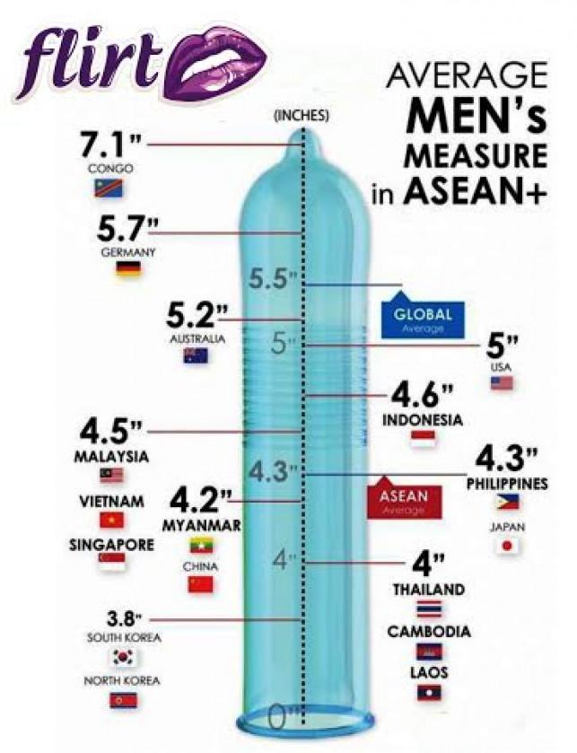 ASEAN Community Members line up…
